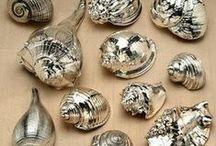 DIY- Sea Shells & Sea Glass