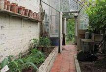 jardin / garden bird house sun house