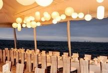 Beach Wedding for Alex