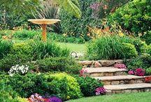 Jardines y balcones (garden) / Preciosos jardines que deleitan los sentidos