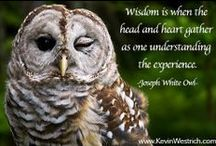Inspirations / Quotes, thoughts, knowledge that have guided my journey. #TrustPatienceSurrender