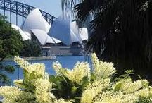 Sydney / Things to see and do in Sydney - ideas from a local and a tourist.