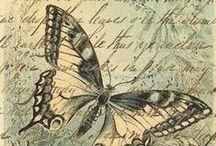 Fly / Minden Lélek egyedi, mint a pillangó mintázata...