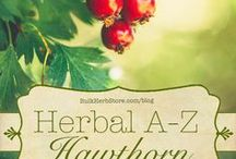 Herbs A-Z / About single herbs and their uses, from A-Z