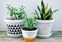 Do it yourself / Eenvoudig zelf te maken en leuk voor op je balkon of voor in de tuin.