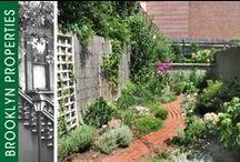 Yards & Gardens