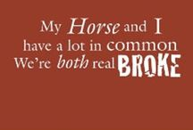 Equine Humor / Jokes just for Equestrians, Cowgirls and all who love horses. / by Gloria Kim