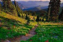 Washington Life / Enjoy living or vacationing in beautiful Washington state!