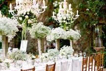 Wonderful Wedding / Wonderful wedding inspiration from gowns to decor to cakes and more!
