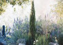 Taras - Ogród / Garden ideas