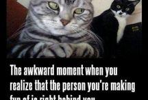 LOL / by Kitty Foy
