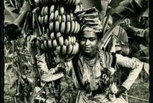Vintage | West Indies