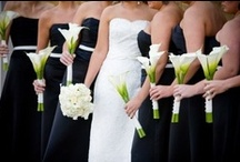 White Calla Lily Weddings