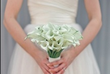 Calla Lily Weddings / Calla Lily Weddings with Callafornia Callas. www.CalCallas.com