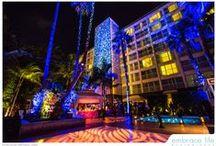 TLS: Viceroy - Santa Monica
