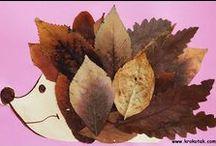 jeseň / autumn
