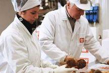 L'azienda / L'azienda Asiago Food. Scopri di più su www.asiagofood.it!
