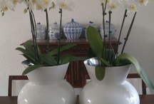 Home Decoration / I love my white interior but I like to see many kinds of interiors / by G e r r i e Fijneman