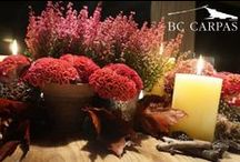 Decoraciones e ideas para decorar una carpa / Ideas for the decoration of a tent / http://www.bc-carpas.com/2015/11/05/decoracion-e-ideas-en-otono/