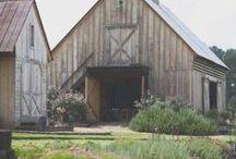 Country Farm: design