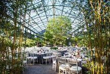 Boda Invernadero / Greenhouse wedding