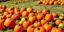 Halloween decoraciones / Decoraciones y temática de Halloween.
