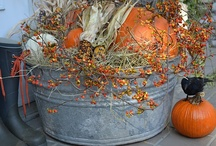 fall ideas / Fall is one of my favorite times of year.  I like to decorate my house and love all the ideas I can get. / by Dawn E