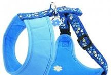 Dog Harnesses & Leads