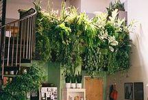Sustainable Loft Design