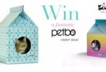 Petbo / Designer Playhouses for Cats!  A purrfect hiding place for your feline friend!  £32.99