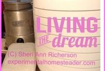 Self-Sufficient Lifestyle / #experimentalhomesteader #sheriannricherson / by Sheri Ann Richerson - Experimental Homesteader