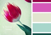 *Color Palette* / by Lisa Reyes