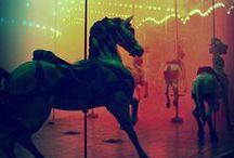 Fairgrounds & Circus