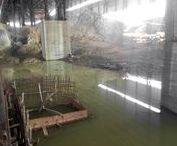 Заброшенный завод / Фотографии небольшого, заброшенного завода