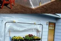 Garden ideas / by Pat Reinert