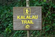 Kalalau Trail / The 11 mile trail leading to Kalalau Beach