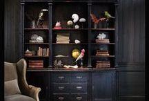 C U R I O S I T I E S / cabinet of curiosities / cabinet de curiosités