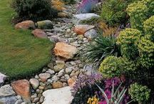 Garden and Backyard Inspirations / Inspirations for all of your outdoor spaces. Gardens, patios, landscaping and more.