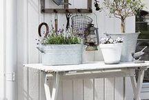 inreda växthus / Ideer om miljön inuti och runt omkring växthuset/orangeriet