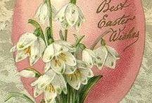 Påsk. / Påsk. Easter Paques. Cards vintage. / by Ingela Stålhandske