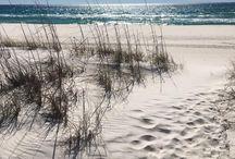 Bords de mer / axé principalement sur les bords de plage. mon lieu de ressource.