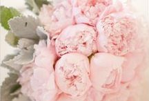 A Pink Wedding / This collection of pink ideas is full of ways to make your wedding unique. Get inspired!