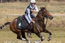 Polocrosse / South African Polocrosse. Shongweni Club