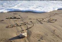 Actualités rétaises / Les informations utiles et récentes sur l'île de Ré pour les vacances ! L'île de Ré c'est aussi un quotidien et ses événements, à retrouver sur www.easy-re.com/iledere/actualites