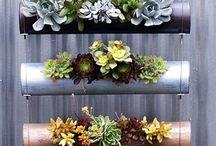 Garden Inspiration / Plants, flowers, landscape design