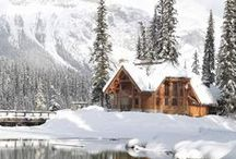 Winter / Snow is falling and the Holidays are coming. Winter is here! This board is to share everything Winter related.