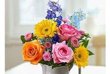 Flowers & Floral Arrangements / Discover fresh flowers online, gift baskets, and florist-designed arrangements. Explore our favorite floral arrangements for any occasion.