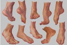 Feet,legs