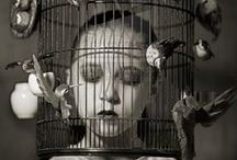 Artistic Photography / Art and photography