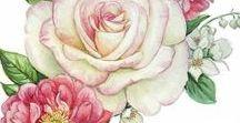 rajzolt minták: színes virágok